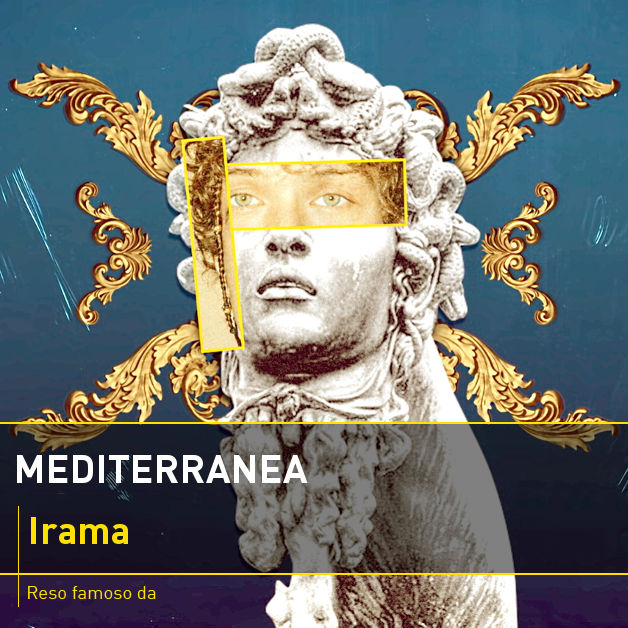 Mediterranea mp3